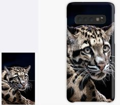 Clouded Leopard Phone Case, Samsung Galaxy Case, Skin, Samsung Phone Cases, DAM Creative, Redbubble, Christmas Gift Ideas,Framed Print, Greeting Card, iPhone Case, iPad Case, Throw Pillow, Tote Bag, #findyourthing #DAMcreative #ChristmasGiftIdeas Galaxy Phone Cases, Iphone Cases, Samsung Galaxy, Framed Prints, Canvas Prints, Art Prints, The Hunting Ground, Clouded Leopard, Leopards
