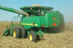 harvesting corn on the combine and tractor
