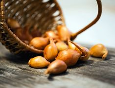 Nasiona – czy przyłączysz się do rewolucji, która ocali naszą żywność?