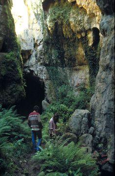 """""""Phosphatières du Cloup d'Aural - De véritables """"gisements"""" pour les paléontologues"""" Copyright Parc Naturel Régional des Causses du Quercy. Photo publiée sur http://www.parc-causses-du-quercy.fr/index.php/photos/phosphatieres_du_cloup_d_aural"""