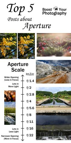 Top 5 Posts on Aperture | Boost Your Photography