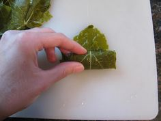 Step-by-step instructions for how to make Greek Stuffed Grape Leaves (Dolmades) Eat Greek, Stuffed Grape Leaves, Mediterranean Recipes, Greek Recipes, Creative Food, A Food, Food To Make, Greece, Appetizers