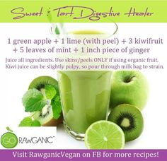 Digestive Healer