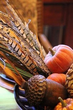 Pheasant feathers, acorn, and small pumpkin collection. Autumn Decorating, Autumn Day, Autumn Leaves, Autumn House, Autumn Girl, Autumn Table, Happy Fall Y'all, Fall Harvest, Harvest Moon