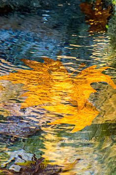 Abstract Fall 1 by christossasloglou