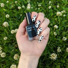 """Tori on Instagram: """"I tried the 🐄 nails trend. I am not sure if they are cow or Dalmatian nails but I like how they turned out anyway. I used @cirquecolors…"""" Fan Nails, Nail Trends, Dalmatian, Jun, Like Me, Nail Art, Memento Mori, Color, Instagram"""
