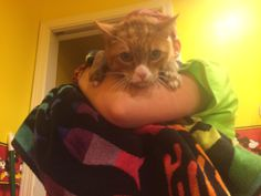 13 years old and just had his first bath. Please give him your support! http://ift.tt/2ssRuM6