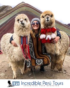 Discover recipes, home ideas, style inspiration and other ideas to try. Alpacas, Travel Pictures, Travel Photos, Adventure Aesthetic, Cusco Peru, Peru Travel, Places To Travel, Travel Destinations, Adventure Travel