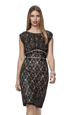 Harlow Lace Panelled Dress $129.99
