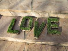 Love Grows!  Grass seed planted in cardboard craft letters...
