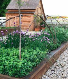 Herb Garden Layout Ideas Big Idea   Herb Gardening   Pinterest ...