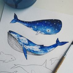 3a047c4f4 76 Best whale hello images