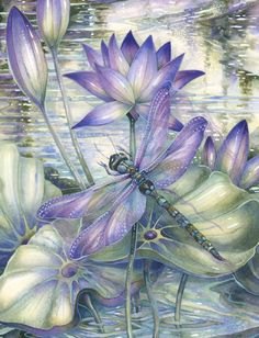 Dragonflies…How to Paint Them and What They Signify! A New Art Class By Jody Bergsma   Jody Bergsmas Blog