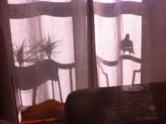 Good morning silhouette