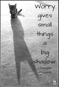 """Worry gives small things a big shadow."" --Swedish proverb"