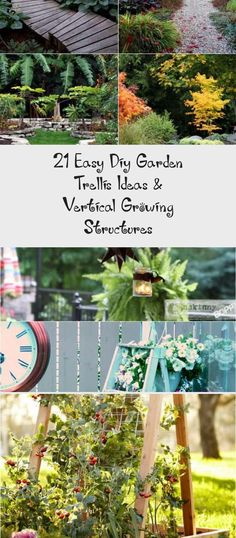 Create enchanting garden spaces with 21 beautiful and DIY friendly trellis and garden structures, such as tunnels, teepees, pergolas, screens and more! - A Piece Of Rainbow Garden Trellis Panels, Arch Trellis, Diy Trellis, Trellis Design, Trellis Ideas, Small Space Gardening, Garden Spaces, Garden Beds, Tomato Trellis