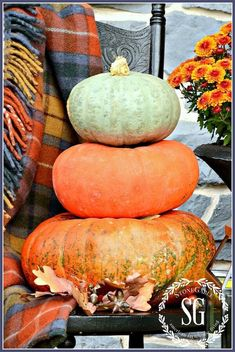 Bring the rich colors and textures of Fall into your home with these seven GORGEOUS Early Fall Decorating Ideas and Autumn DIY projects for inside and out! Pumpkin Decorating, Porch Decorating, Decorating Ideas, Decor Ideas, Little Falls, Welcome Fall, Happy Fall Y'all, Early Fall, Autumn Home
