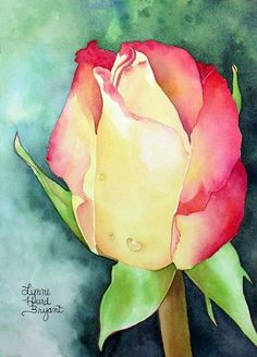 Raindrops on Rose by Lynne Hurd Bryant Watercolor ~ 12 x 9