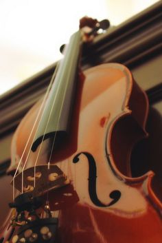 I played violin for 8 years & was asked to play in the symphony. Sound Of Music, Music Is Life, My Music, Piano, Violin Family, Make A Joyful Noise, Violin Music, All About Music, Classical Music