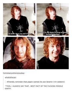 Faramir was great.honestly almost all the men in LOTR were of exceptional quality (except you, Denethor.you can burn all day long) Hell Yeah! Saga, Fandoms, Bagginshield, O Hobbit, Jrr Tolkien, Tolkien Books, Middle Earth, Lord Of The Rings, Superwholock
