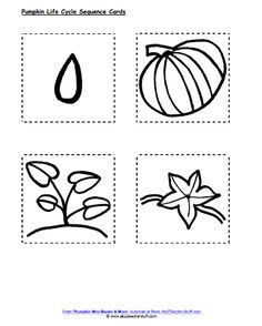 Pumpkin Life Cycle Sequencing Cards | A to Z Teacher Stuff Printable Pages and Worksheets