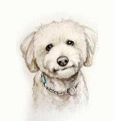 Custom Pet portrait original watercolor painting by LamandaDesigns, $20.00