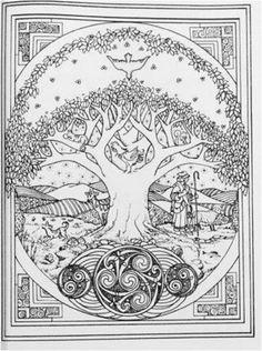 Adult Coloring Book Celtic Art Design Stress Relief Pattern Bird Fish Animals