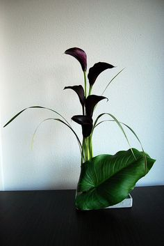 Ikebana 'The big leaf' by Otomodachi, via Flickr