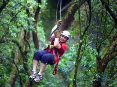 Try out Tarzan like adventure at Karkloof canopy tour (view pics)