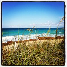 Coral cove Jupiter beach Florida
