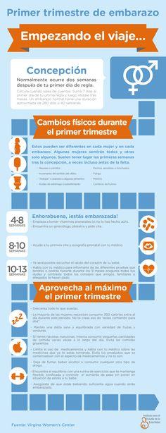 El primer trimestre de embarazo. Cambios en el cuerpo y recomendaciones. #infografía #infography #pregnancy #embarazo #primertrimestre