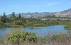 Lake Los Carneros, Goleta California