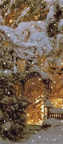 I love winter lights in snow. lots and lots of beautiful snow. Winter Szenen, I Love Winter, Winter Magic, Winter Christmas, Prim Christmas, Winter White, Winter Season, Christmas Lights, Christmas Time