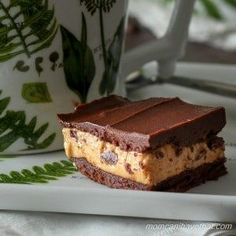 Low carb keto fat bomb layered dessert of chocolate and peanut butter on a white porcelain plate with green botanical ferns and matching coffee cup.
