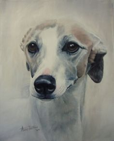 Elegance - Whippet original oil, painting by artist Anne Zoutsos