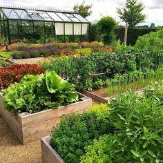 Garden-For-Beginners-Design-Ideas/ potager garden, garden hoe, big garden. Vegetable Garden For Beginners, Veg Garden, Vegetable Garden Design, Edible Garden, Garden Beds, Vegetable Gardening, Potager Garden, Gardening Hacks, Flower Gardening