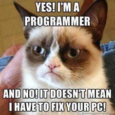 f3caf500b Yes I am a programmer Cat Jokes, Hilarious Jokes, Cats Humor, Hilarious  Pictures