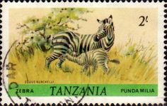 Tanzania 1980 Wildlife Zebra Fine Used SG 315 Scott 169 Other Tanzania and British Commonwealth Stamps HERE!
