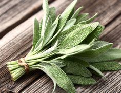 Want to grow a healing garden? From sage to thyme, we're counting down 8 of the best medicinal plants to grow at home. Salvia Officinalis, Organic Nutrients, Organic Vegetables, Container Vegetables, Nigella Sativa, Sage Benefits, Health Benefits, Sage Herb, Sage Plant