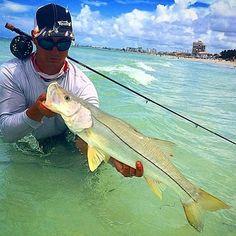 Spectrum response works for Saltwater fishing or freshwater fishing. Catch more fish, catch bigger fish! www.spectrumresponse.com