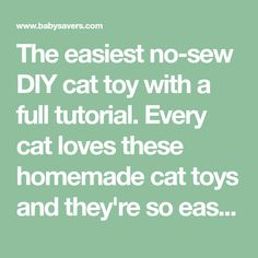 The easiest no-sew DIY cat toy with a full tutorial. Every cat loves these homemade cat toys and they're so easy to make!