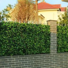 Cheap garden ornaments, Buy Quality boxwood hedge directly from China artificial boxwood hedge Suppliers: ULAND Sythenic Plastic Plants Grass Fence Artificial Boxwood Hedges Ivy Fencing Panels Outdoor Balcony DIY Garden Ornaments Artificial Garden Plants, Artificial Hedges, Artificial Plant Wall, Artificial Boxwood, Artificial Flowers, Indoor Plants, Ivy Plants, Artificial Turf, Fake Plants Decor