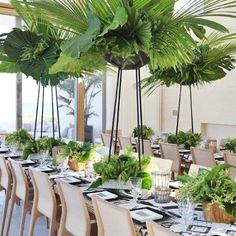 So inviting!  The use of wood pots with lush greens + white linens and natural wood frame chairs gives the space a relaxed spa like feel. The palm trees are pretty amazing too! david-stark-how-to-plan-party-02.jpg