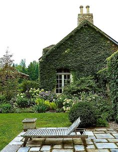 ivy covered #paved patio