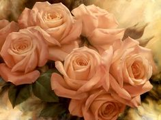 peach-rose-splendor-ii-by-igor-levashov