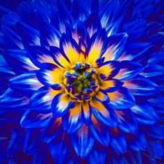 iPhone Photos Blue Color 28