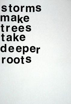 As tempestades fazem com que as árvores aprofundem as suas raízes.