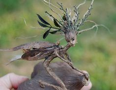 mysterious fae... appear as plant life and insects at a glance. Art Dolls by Candice Cinque.