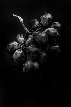Low key photography of grapes. Black N White, Black White Photos, Black Art, Black And White Photography, All Black, Color Black, Black Food, B&w Tumblr, Yennefer Of Vengerberg
