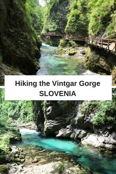 How to visit the spectacular Vintgar Gorge near Bled in Slovenia. We show you how to get there, how long hiking the Vintgar Gorge takes, and what you'll see along the way.